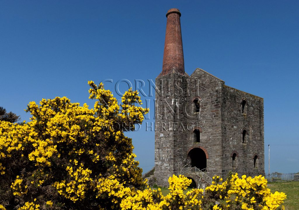 Prince of Wales Shaft Engine House and Gorse